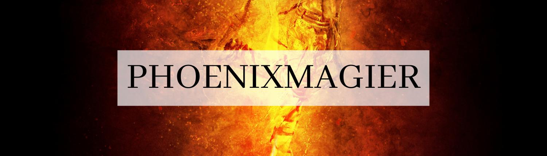 "Titelbild ""Phoenixmagier"""